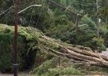 storm damage on lines